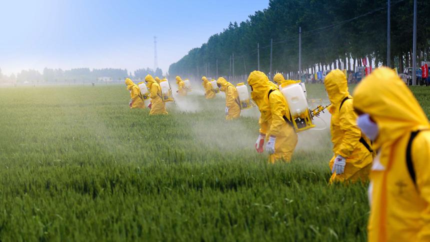 Déversement de pesticides